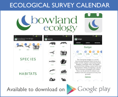 Ecological Survey Calendar